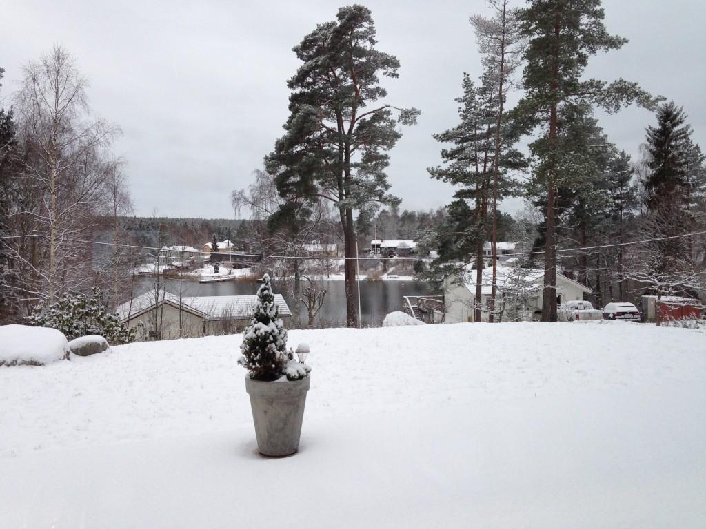 snö framsida